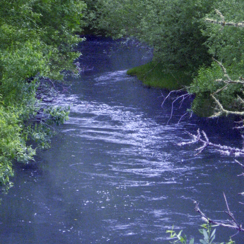 Image of Mary's River